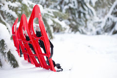snowshoeing Snowshoes im Schnee Stockfotos