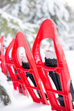 snowshoeing Snowshoes na neve Imagens de Stock Royalty Free