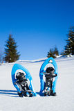 snowshoeing Snowshoes nella neve Fotografia Stock