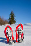 Snowshoeing. Snowshoes in the snow. Royalty Free Stock Photos