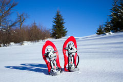 Snowshoeing. Snowshoes in the snow. Stock Photography
