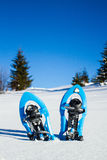 Snowshoeing. Snowshoes in the snow. Stock Image