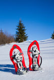 Snowshoeing. Snowshoes in the snow. Royalty Free Stock Images