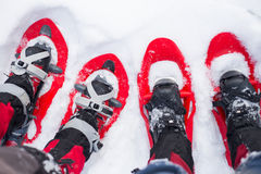 Snowshoeing. Snowshoes in the snow. Royalty Free Stock Photo