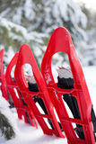 Snowshoeing. Snowshoes in the snow. Royalty Free Stock Photography