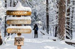 Snowshoeing su una traccia di inverno Immagine Stock Libera da Diritti