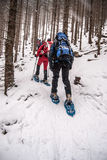 Snowshoeing turister på vinter som fotvandrar slingan i skog i Fischbacher Alpen Royaltyfri Fotografi