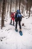 Snowshoeing turyści wycieczkuje ślad w lesie w Fischbacher Alpen na zimie Fotografia Royalty Free