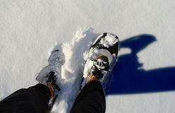 Snowshoeing in Winter Royalty Free Stock Photo