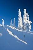 Snowshoeing in Winter Wonderland Stock Photos
