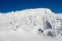 Snowshoeing in Winter Wonderland. A lady snowshoeing in the winter wonderland of Mt Seymour, Vancouver Stock Images