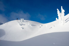Snowshoeing in Winter Wonderland. A man snowshoeing in the winter wonderland of Mt Seymour, Vancouver Stock Image