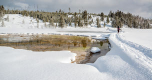 Snowshoeing in Yellowstone Royalty Free Stock Images