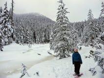 Snowshoer chodzi oszałamiająco piękno zima krajobraz na Cyprysowej górze i podziwia obraz stock