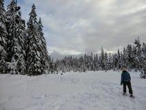 Snowshoer chodzi oszałamiająco piękno zima krajobraz na Cyprysowej górze i podziwia zdjęcia royalty free