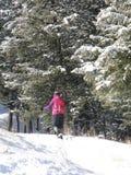 Snowshoer sur la traînée d'hiver Photo libre de droits