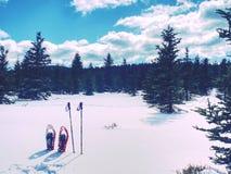 Snowshoes в снеге След зимы над снежными холмами и горами Стоковое Фото