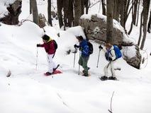 Snowshoes снега Стоковая Фотография RF