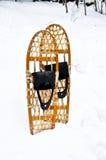 Snowshoes стоя в снежке Стоковые Изображения