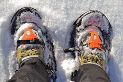 Snowshoes. To walk in the snow royalty free stock image