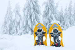Snowshoes Stock Images
