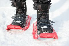 Snowshoes. Snowshoeing closeup. Red new modern high-end . Man hiking in snow on snowy winter day. Shallow depth of field stock photography