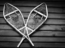 snowshoes Fotos de Stock Royalty Free