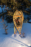 Snowshoes Royalty Free Stock Images