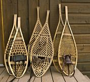 Snowshoes Assorted Imagens de Stock Royalty Free