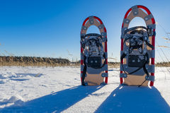 Snowshoes cast a shadow Stock Image