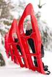 Snowshoes in the forest. Stock Photography