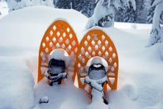 snowshoes nella neve Fotografie Stock Libere da Diritti