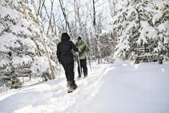 The snowshoes people in forest from back royalty free stock photos