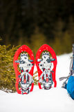 Snowshoes are on the snow. Stock Photography