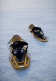 Snowshoes in a snowy landscape Royalty Free Stock Photography