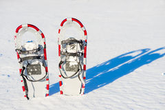 Snowshoes stuck in the snow Royalty Free Stock Images
