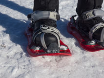 Snowshoes for walking on snow. Stock Images