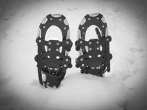 Snowshoes Winter Royalty Free Stock Photography