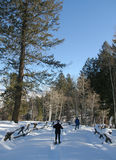 Snowshoewanderer, blauer Himmel Lizenzfreies Stockbild