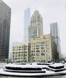 snowstorm Fotografia de Stock