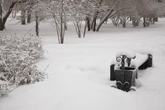 After snowstorm Stock Photography