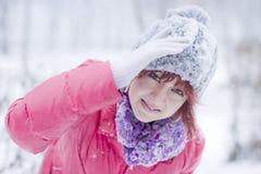 Snowstorm Stock Image