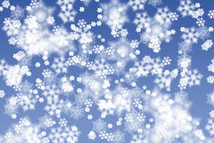 Snowstorm Royalty Free Stock Photography