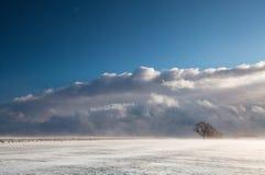 Snowstorm Stock Photo