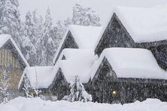 snowstorm Arkivbilder