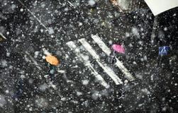 snowstorm Immagini Stock