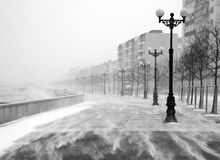 snowstorm Fotos de Stock Royalty Free