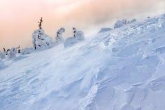 snowstorm Στοκ φωτογραφίες με δικαίωμα ελεύθερης χρήσης