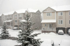 Snowstorm. In a residential area Stock Image
