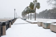 Snowstorm in Charleston, South Carolina. Waterplace Park and its palmetto trees are covered in snow as a freak winter storm hits Charleston South Carolina and royalty free stock image
